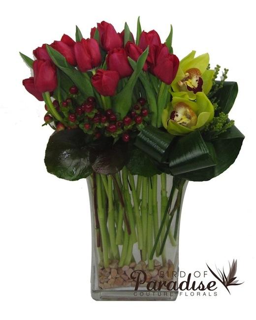 Pleasant Tulip