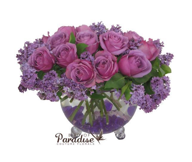 Purple Lilac